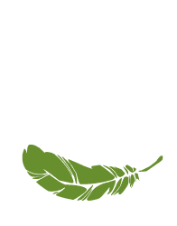 Green Adventure - logo